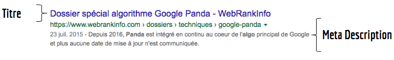 Exemple snippet Google